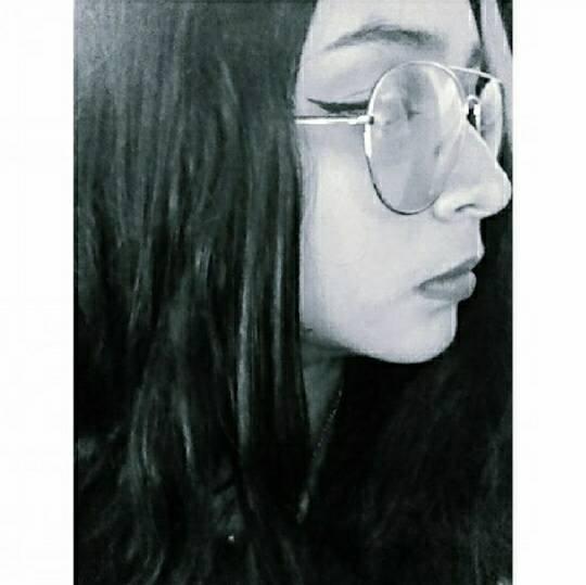 Imagen de toro-nicky