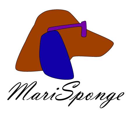 Imagen de MariSponge