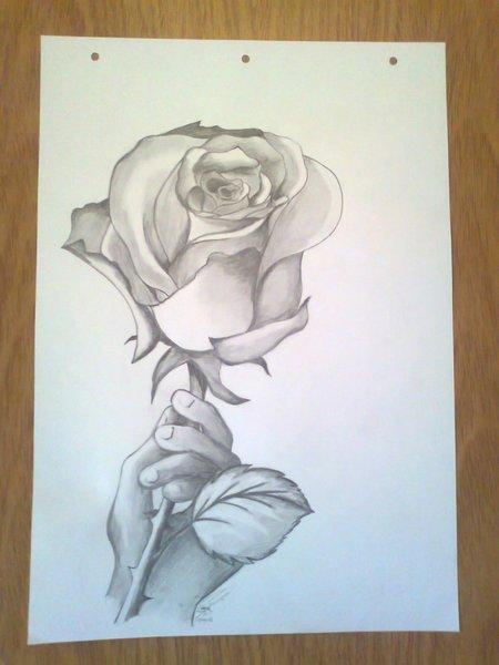 Imagenes para dibujar a lapiz rosas  Imagui