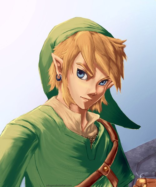 link_skyward_sword_38491.jpg
