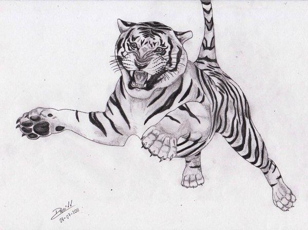 Dibujo Lapiz Animales Animales Para Dibujar a Lápiz