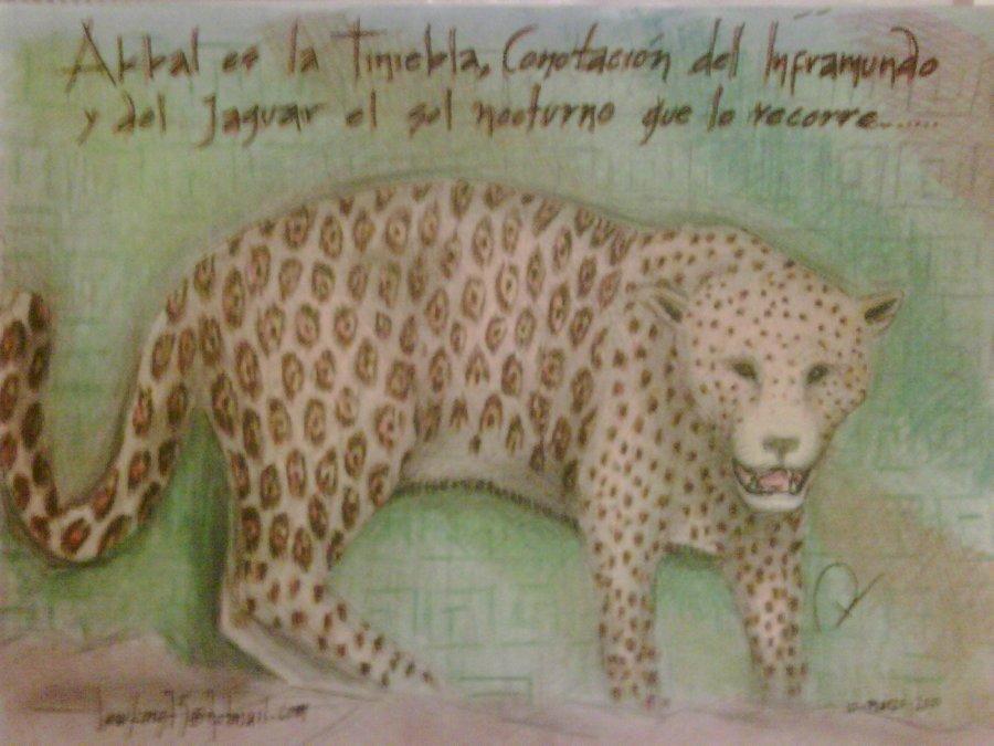jaguar_4384.jpg