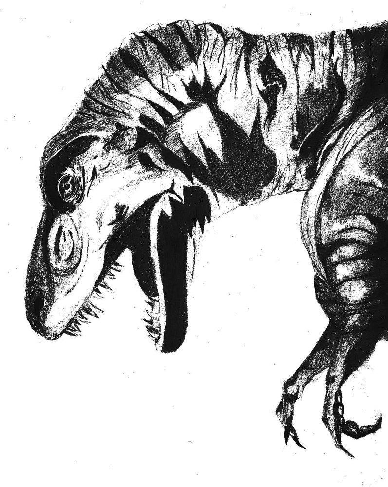 t_rex_11535.jpg