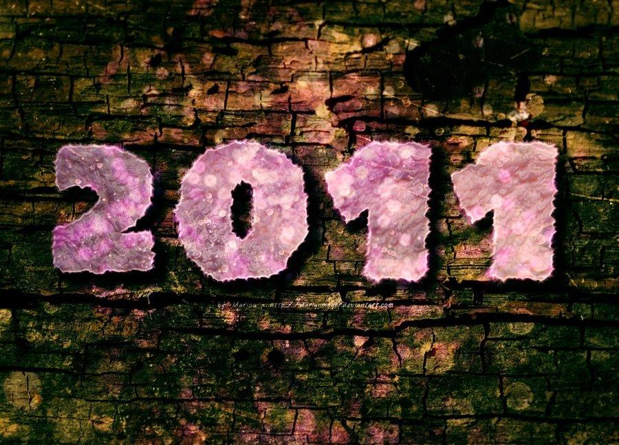 Feliz_2011_13595.jpg