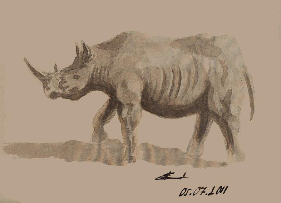 rhino_23518.jpg