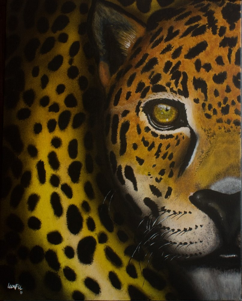 Jaguar_16220.jpg