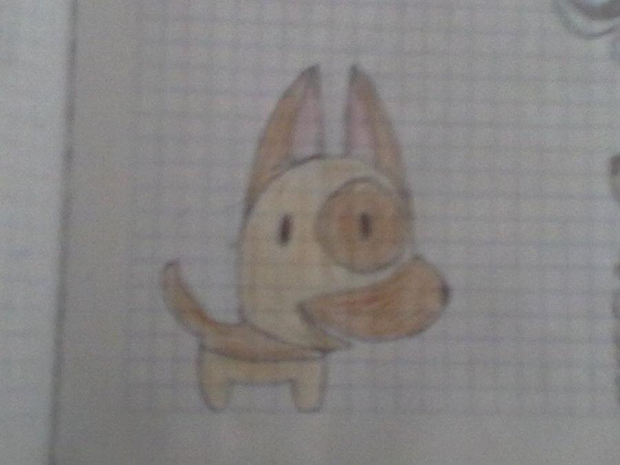 perrito_28038.jpg