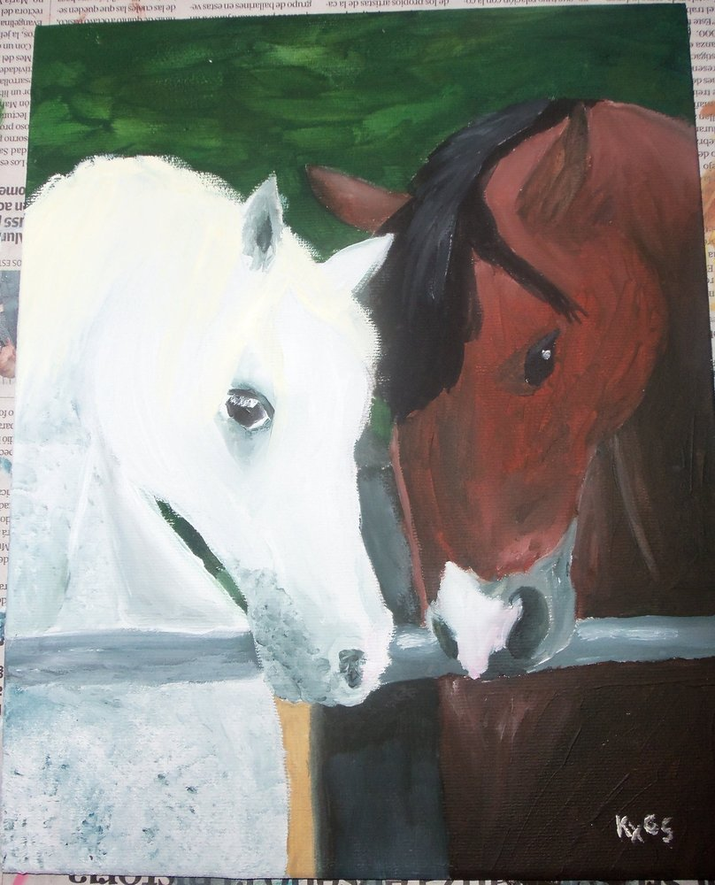 caballos_blanco_y_cafe_32988.JPG
