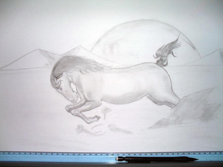 animales_33354.JPG