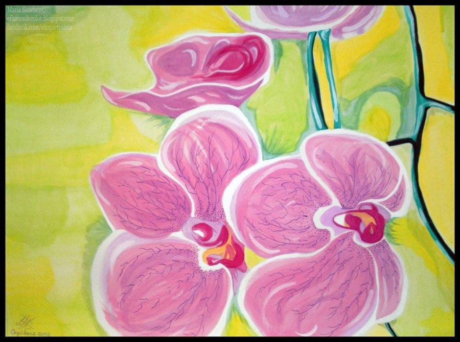 orquideas_33743.jpg