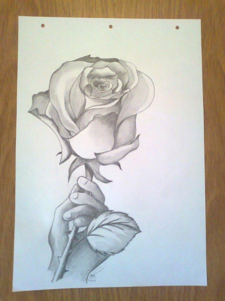 No Hay Rosa Sin Espinas Por Danihernandez Dibujando