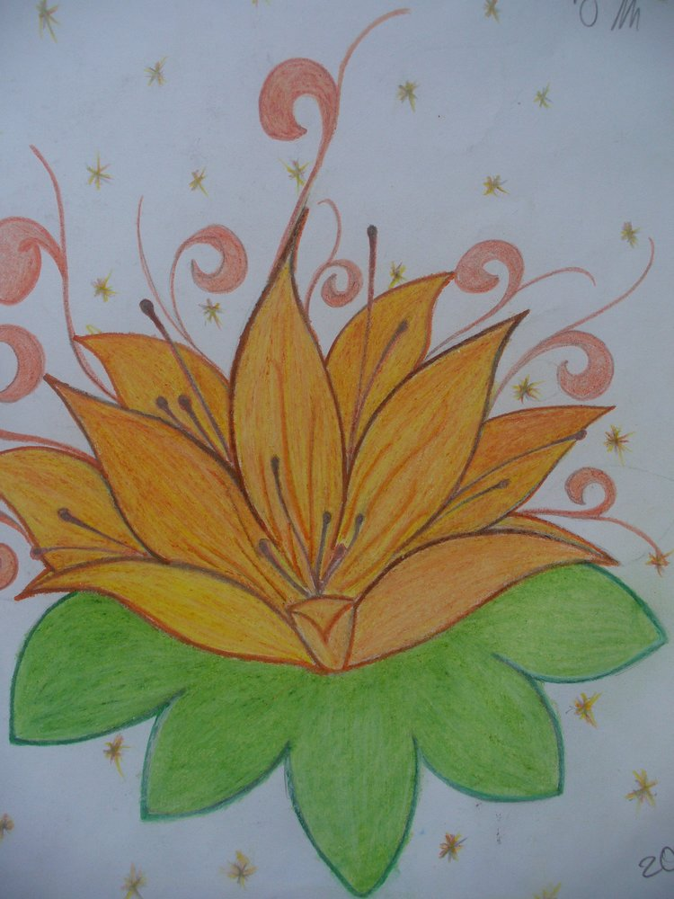 lotus_42229.JPG