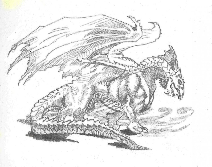dragon_blanco_45539.jpg