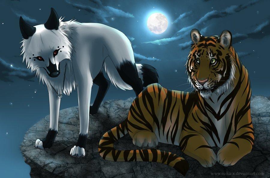 lobo_y_tigre_en_la_noche_45677.jpg