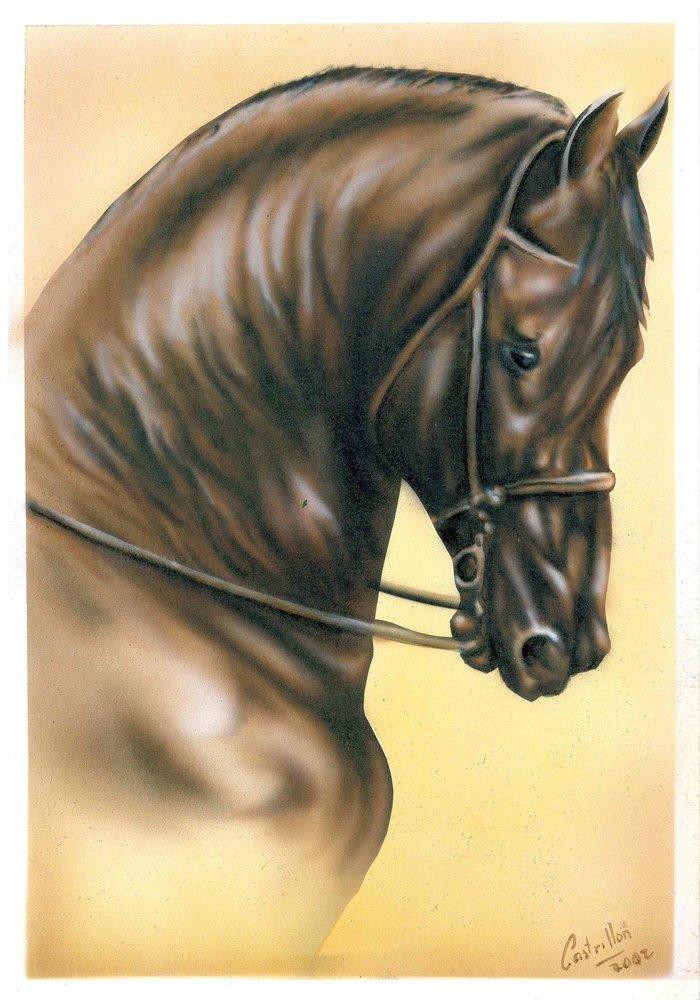 caballo_45828.jpg