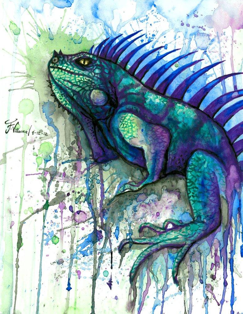 iguana_46171.jpg