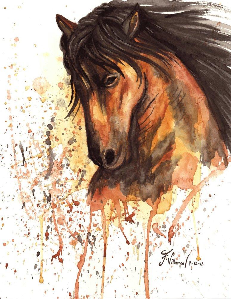 un_buen_caballo_46285.jpg