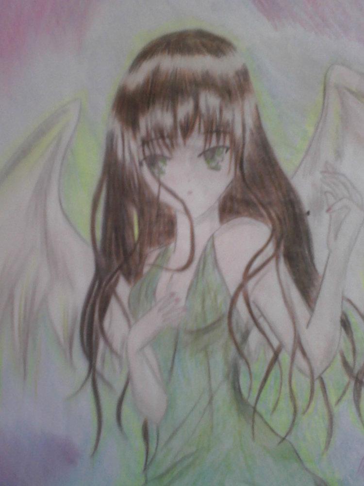 me_ves_31640.jpg