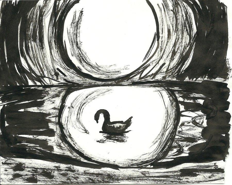 swan_in_black_57955.jpg