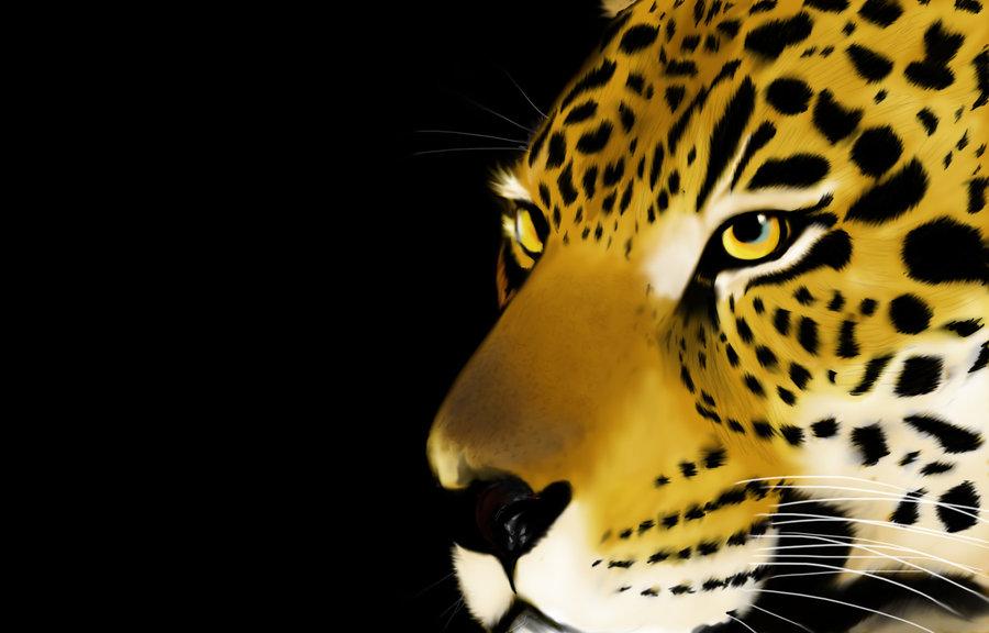 jaguar_63497.jpg