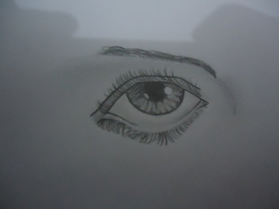 ojo_63571.JPG