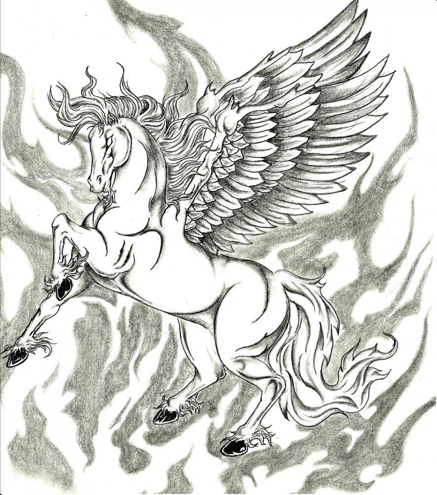 ejercicio_caballo_con_alas_65648.jpg