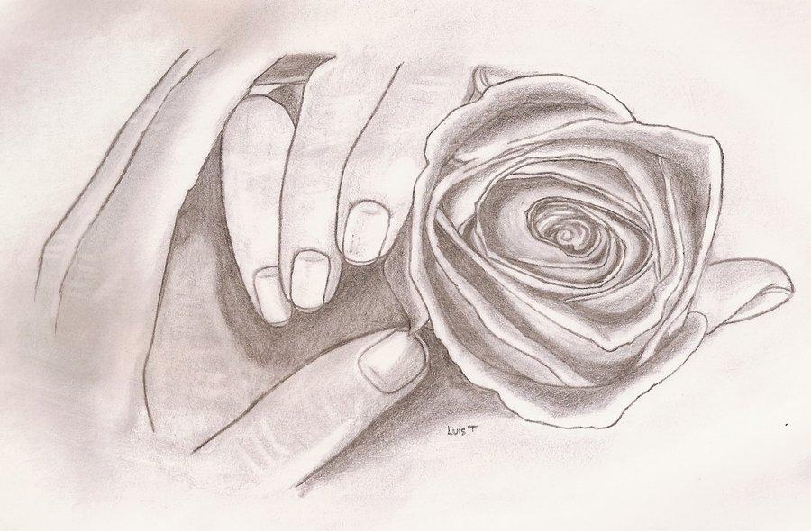 manos_con_una_rosa_66882.jpg