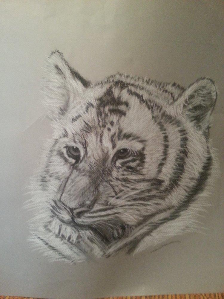 tigreton_68686.jpg