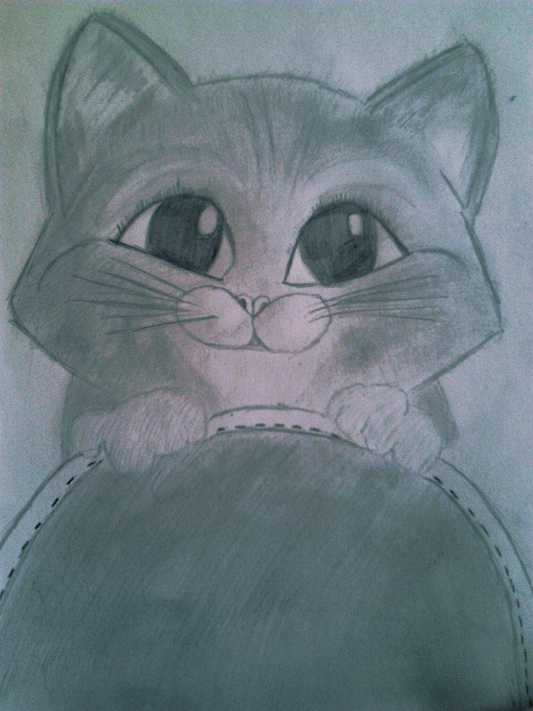 gato_con_botas_71495.jpg