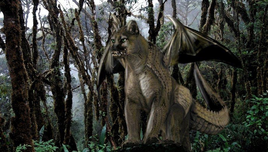 dragon_de_la_jungla_nublada_51362.jpg