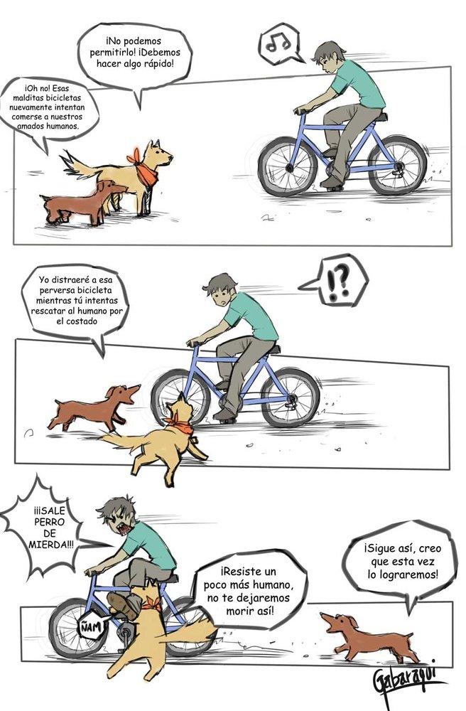 perros_y_bicicletas_53195.jpg