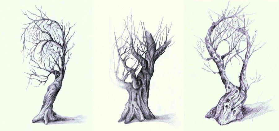 bocetos_proyecto_naturaleza_y_rostro_77467.jpg