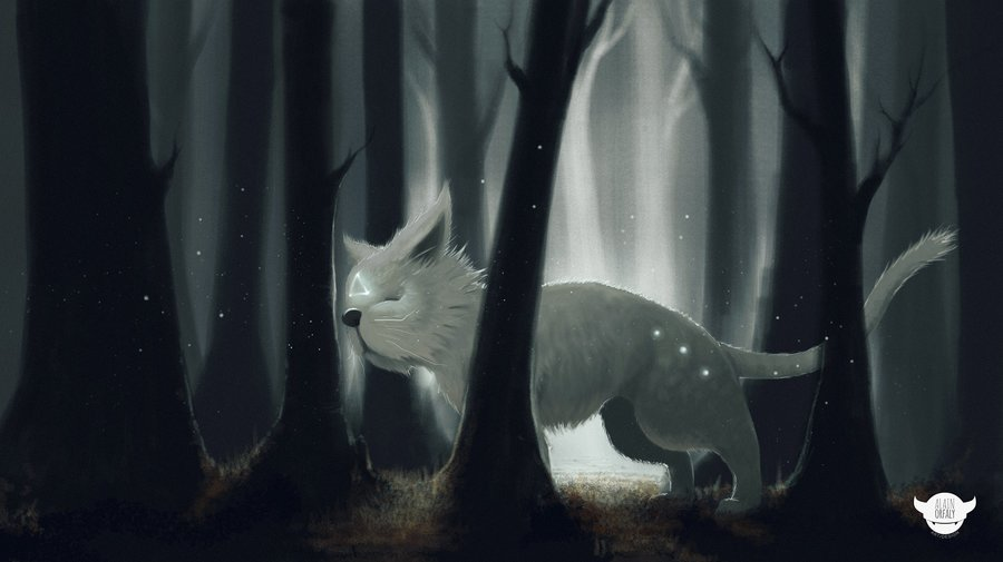 astral_cat_78317.jpg