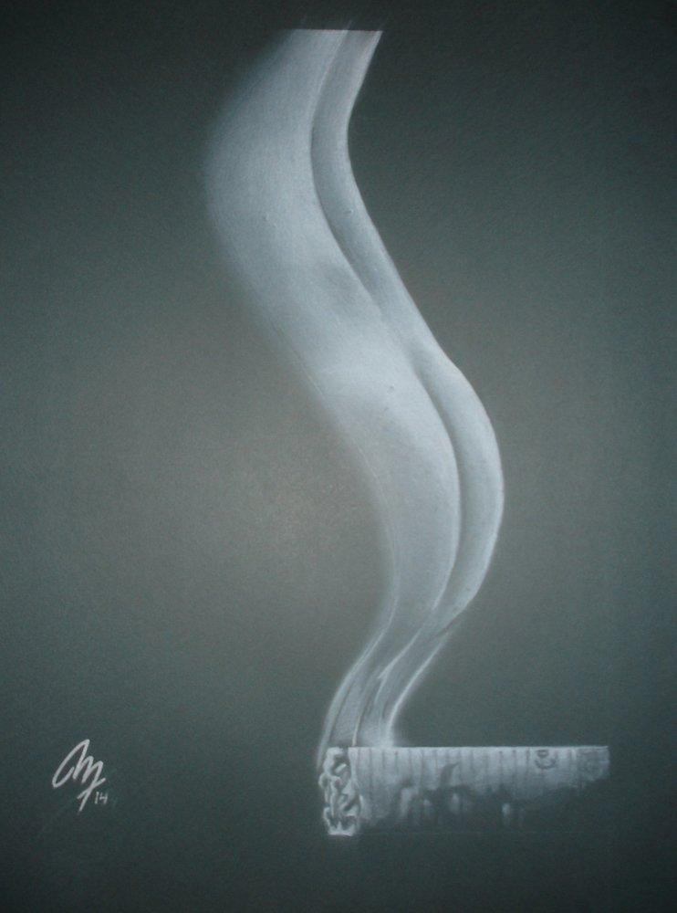 a_quien_molesta_el_humo_79519.jpg