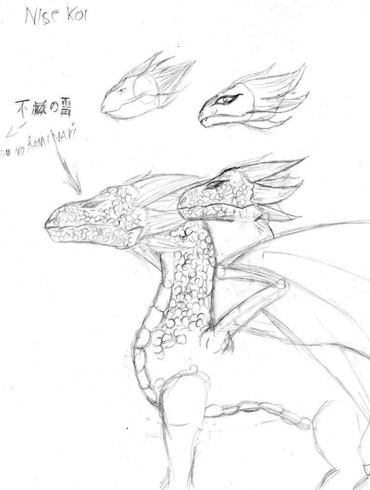 dragones_81954.jpg