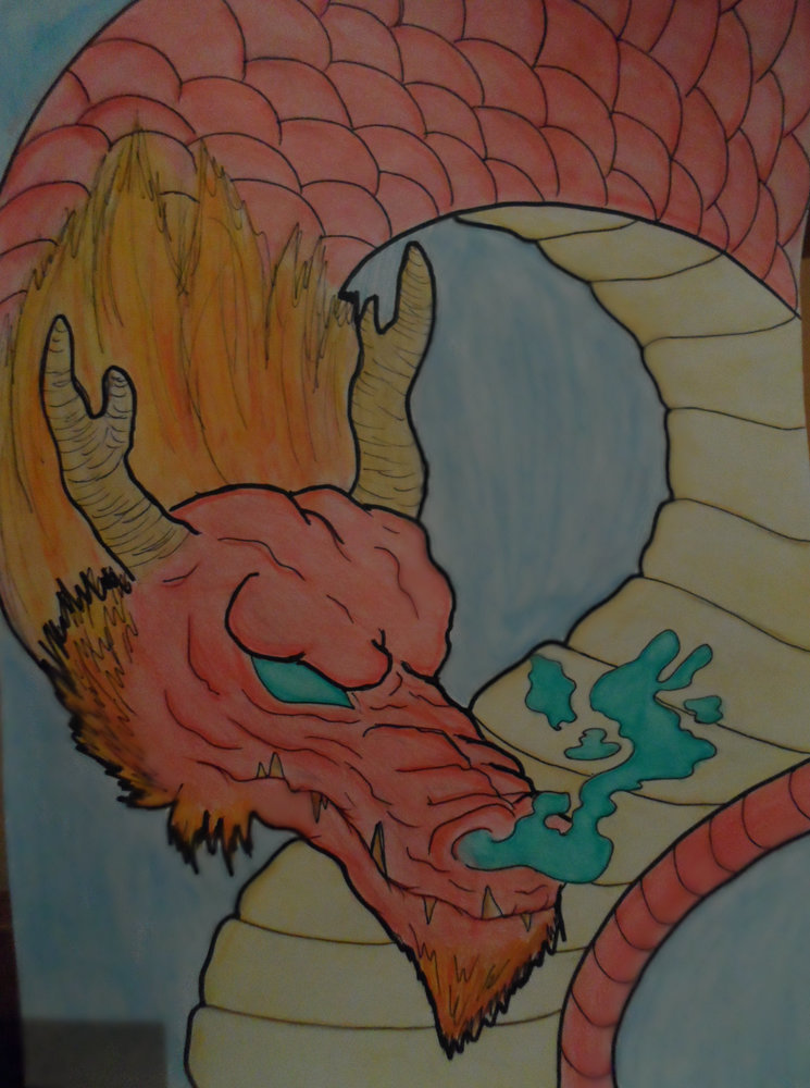 dragon_chino_2_82013.jpg
