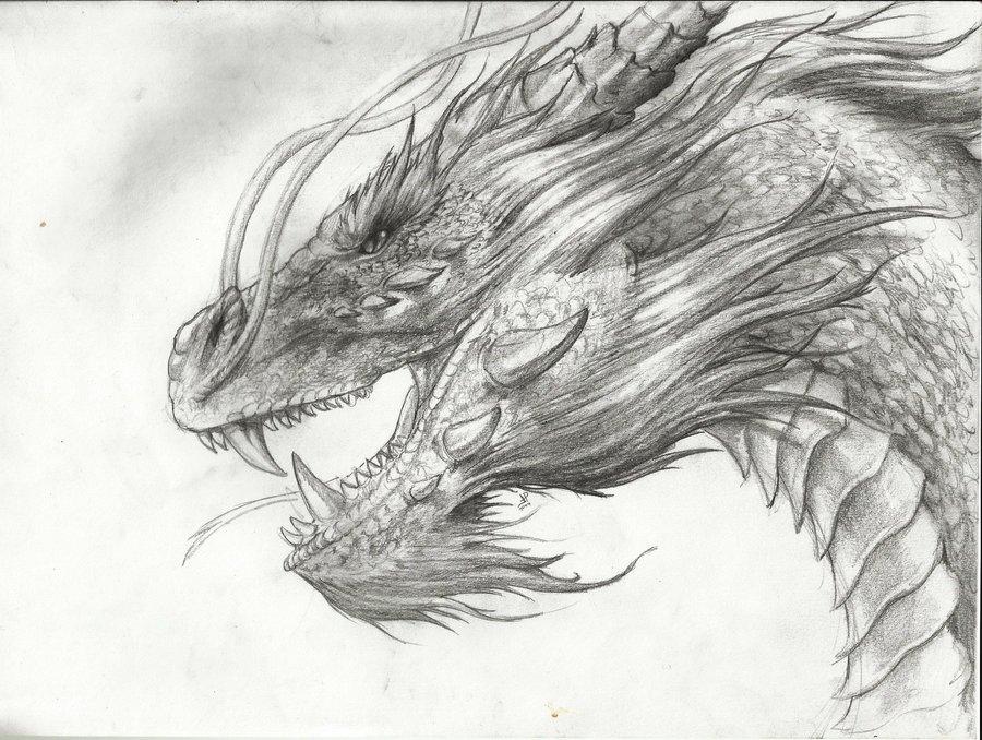 dragon_73213.jpg