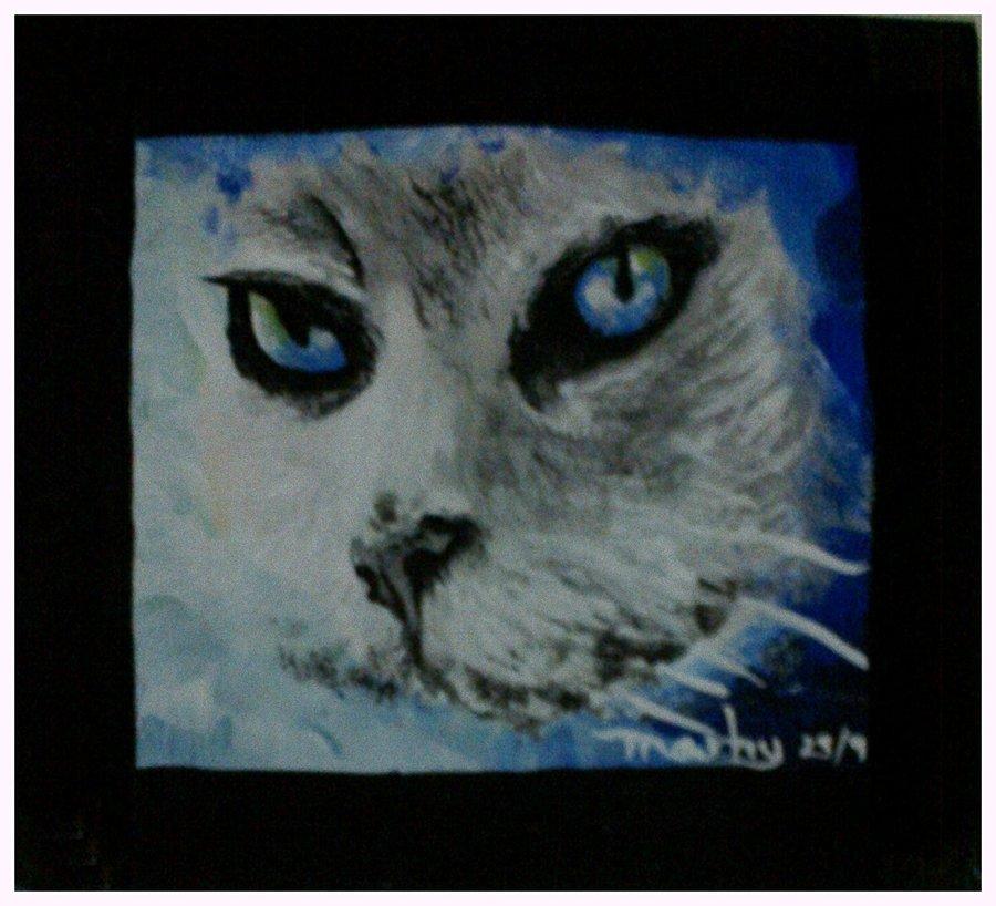 evil_cat_eyes_86855.jpeg