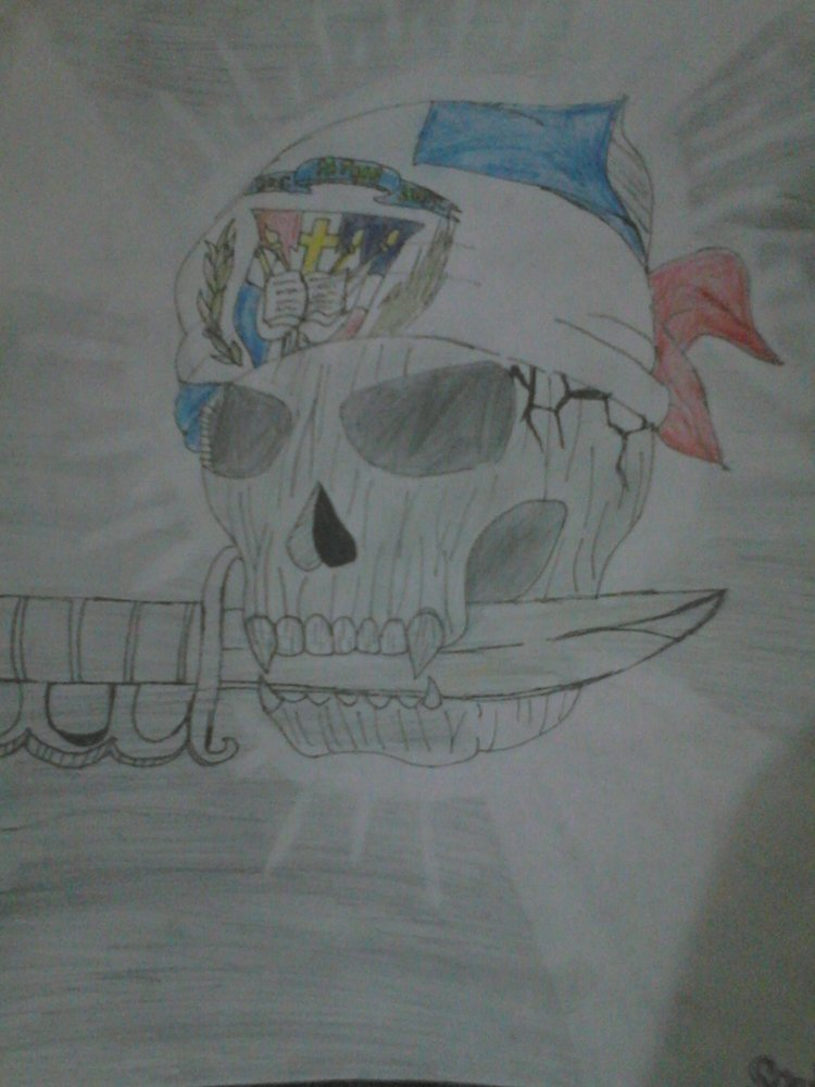skull_flag_73380.JPG
