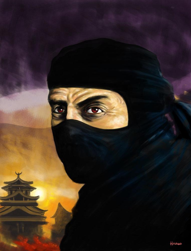 ninja_88439.jpg