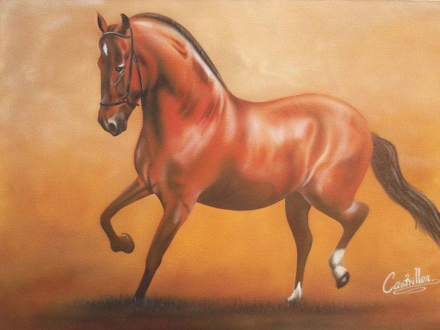 caballo_73995_0.jpg
