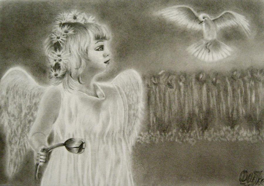 la_paloma_blanca_tiene_un_mensaje_para_el_angel_76543.jpg