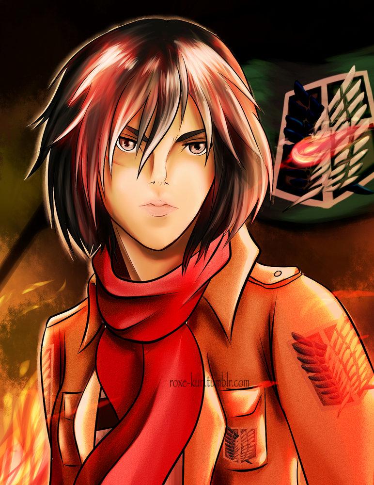 Mikasa_2_211931.jpg