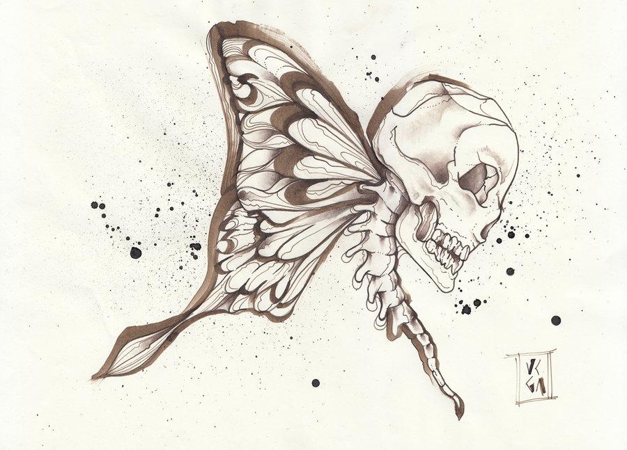 mariposa11_218703.jpg