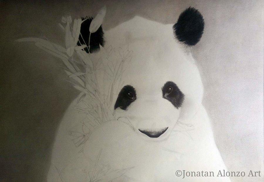 Preview__1___Panda_by_Jonatan_Alonzo_Art_274812.jpg
