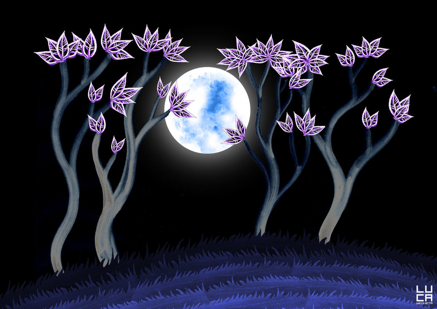 Noche_274991.jpg