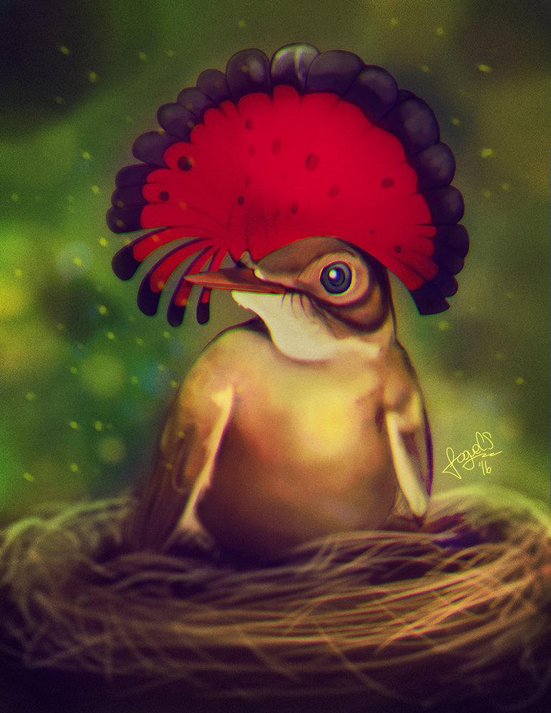 Bird_MosqueroReal_Final_251902.jpg