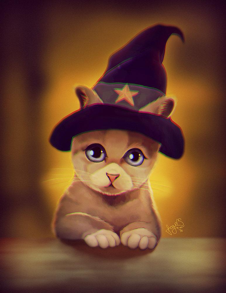 Wizard_Cat_251899.jpg
