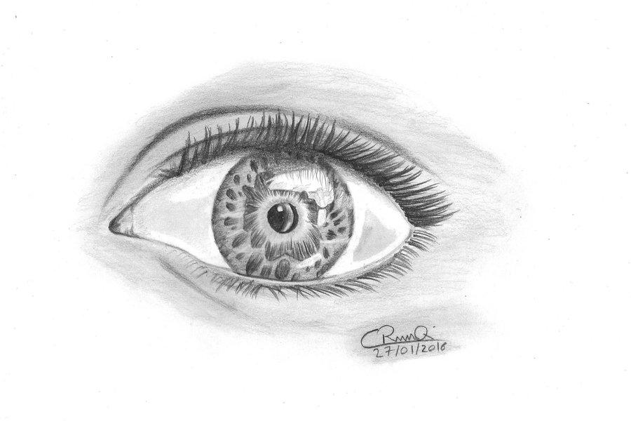 ojo_2_253053.jpg