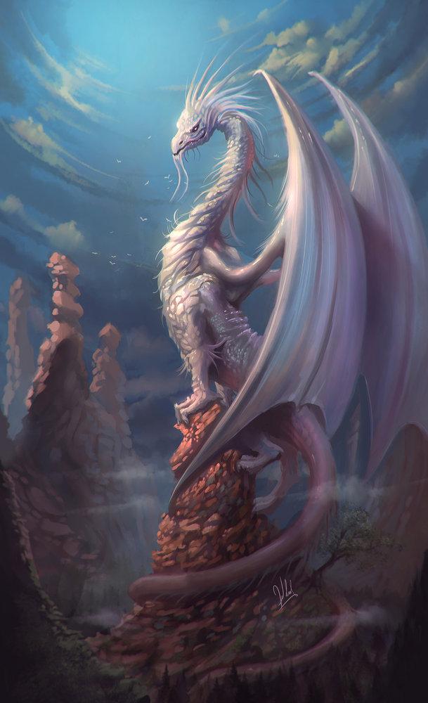 white_dragon_6___copia_257200.jpg